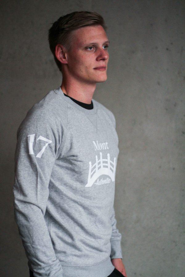 Herren Øresund Sweatshirt - hellgrau